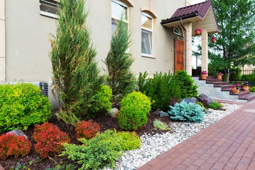 10 easiest ways for maintaining a healthy garden for Bushes for front yard
