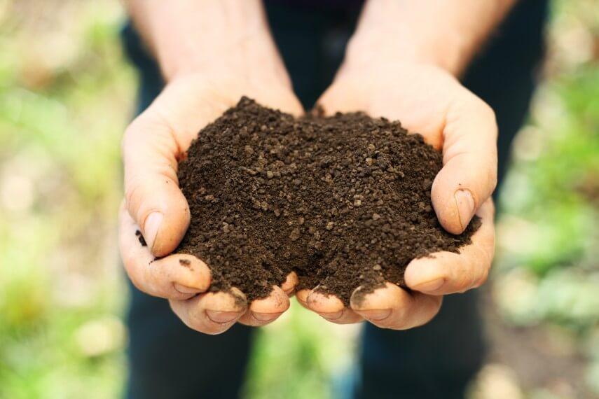 soil - dreamstime