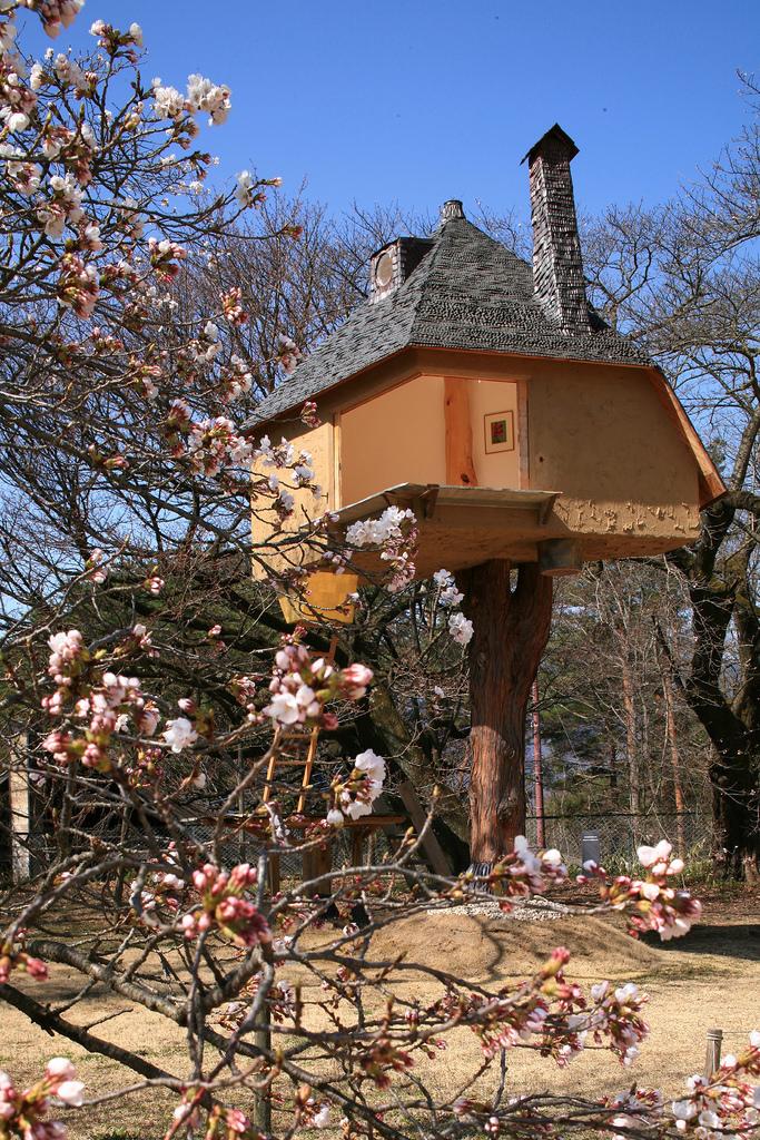 Teahouse Tetsu in Yamanashi (flickr.com)(Dana+LeRoy)