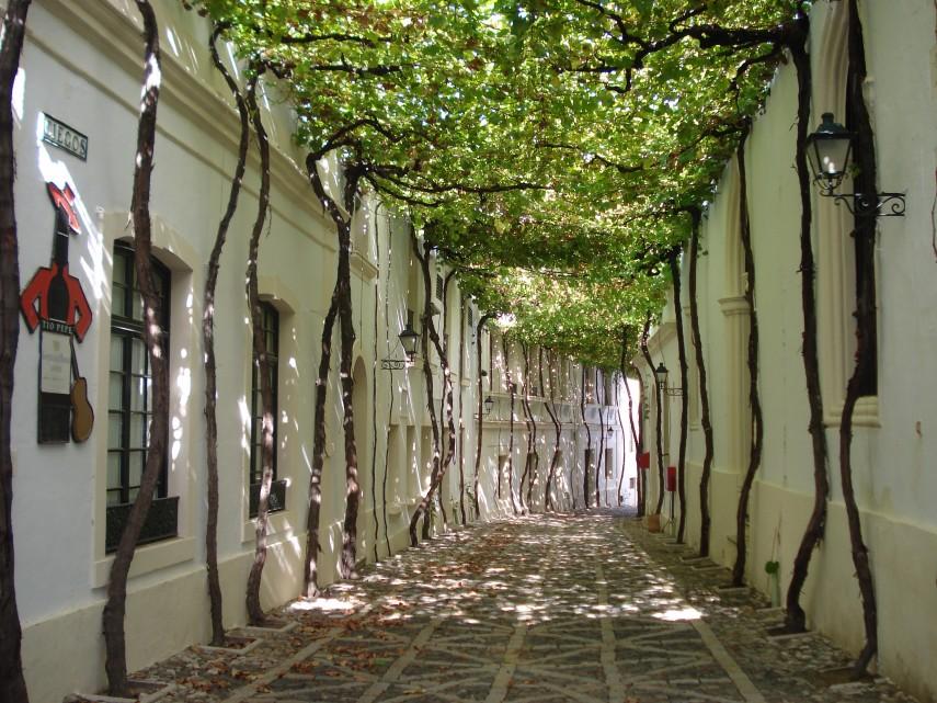 jerez-byass-bodega-old-streets-Spain
