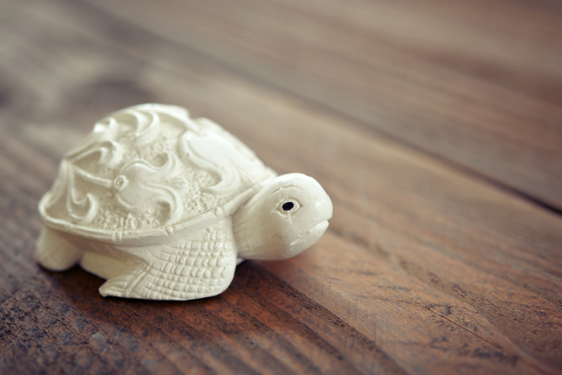 Feng Shui Tips For Placing Tortoise For Good Luck Wealth