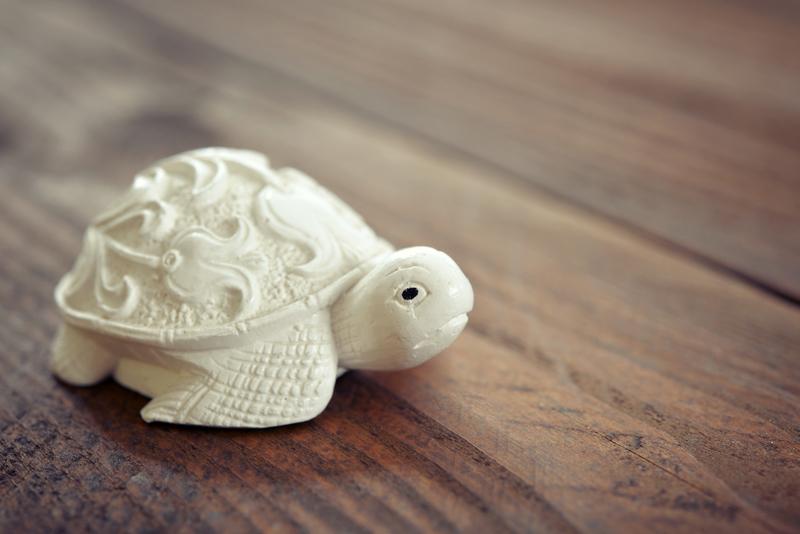 Feng Shui Tips For Placing Tortoise For Good Luck, Wealth