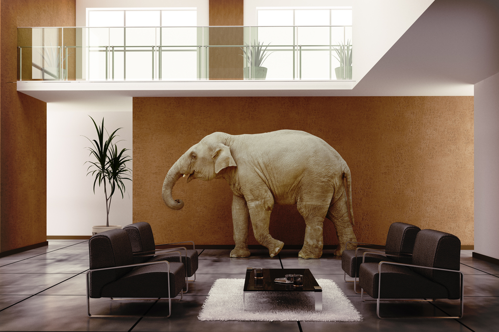 Feng Shui Tips For Luck And Wealth 7 Ways To Use Elephant In Your