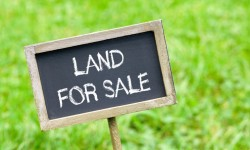 How A Non-Farmer Can Buy An Agricultural Property
